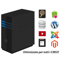 Hosting Server Dedicato BIG